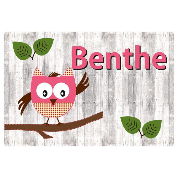 Geboortevlag Funny Owl meisje