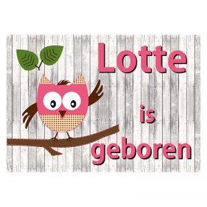 Geboortevlag Funny owl girl