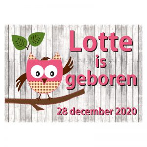 Geboortevlag Funny owl girl met geboortedatum