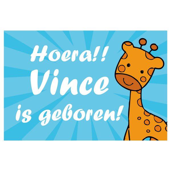 Geboortevlag giraffe jongen