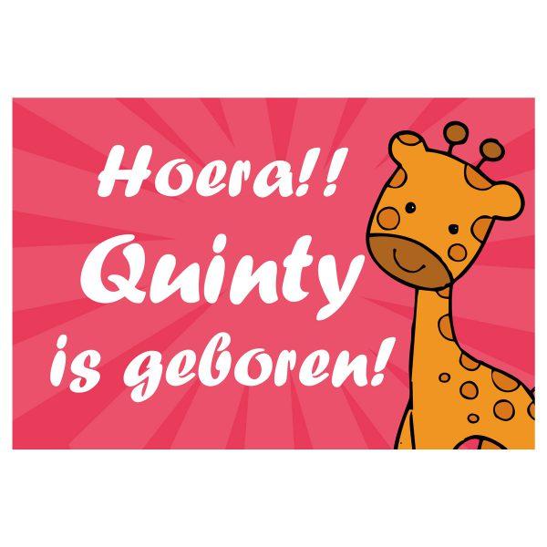 Geboortevlag giraffe meisje