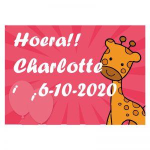 Geboortevlag met naam en geboortedatum giraffe meisje
