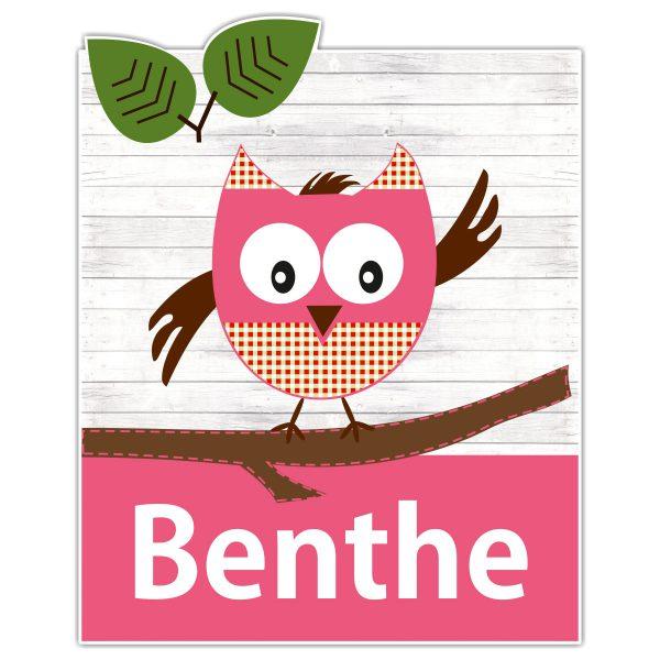 geboortebord Funny owl meisje