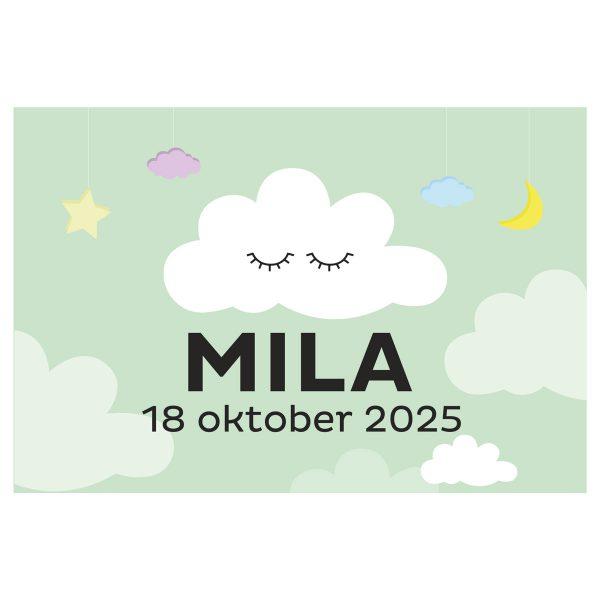 geboortevlag wolkje met geboortedatum